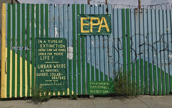 Art on Art Series: A Conversation with Ellie Irons | EPA